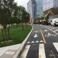 East loop road with new cherry trees, ready and open for visitors.