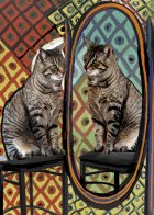 Picasso's Cat with Mirror