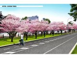 The Future East Drive with 59 New Trees along Cornell Tech