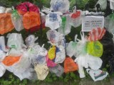 One Million Plastic Bags Every Minute