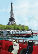Paris Boat Ride / Cats on the Seine
