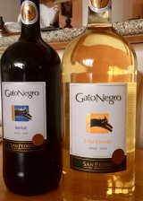 Our favorite Chilean wine from Grand Wine and Liquor