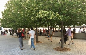 Last summer under the linden trees in FDR Four Freedoms Park