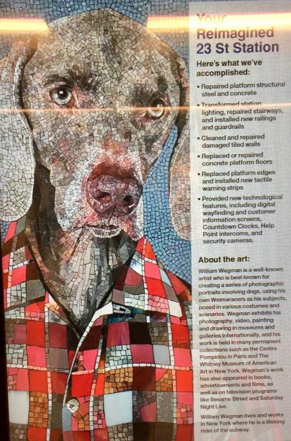 Your host, a welcoming Weimaraner courtesy of New York City artist William Wegman.