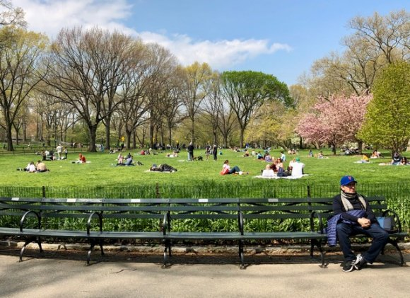Social distancing in sunshine, Central Park meadow, April 25th, 2020.