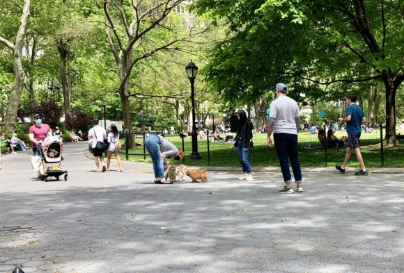 During New York PAUSE, you can still safely mingle and enjoy parks.