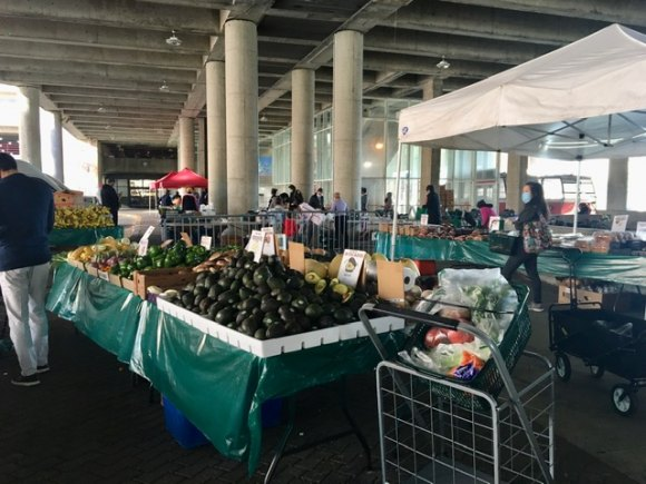 The Roosevelt Island Farmers Market as well as the Free Food Pantry will not return until 2021.