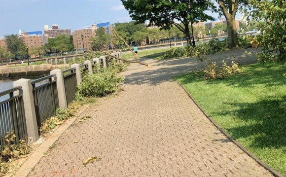 "Untended debris along the seawall failed to reduce visitors in the ""closed"" park."