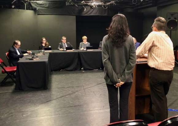 RIOC's shrunken Board listens during public session, May 2019. More seats will be filled soon.