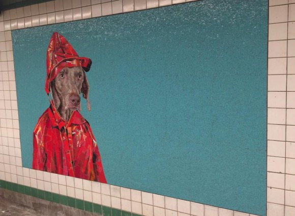 William Wegman art for a rainy day.