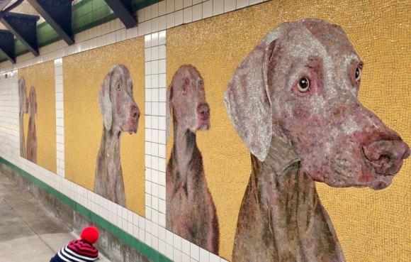 To humanize a station, add canines.