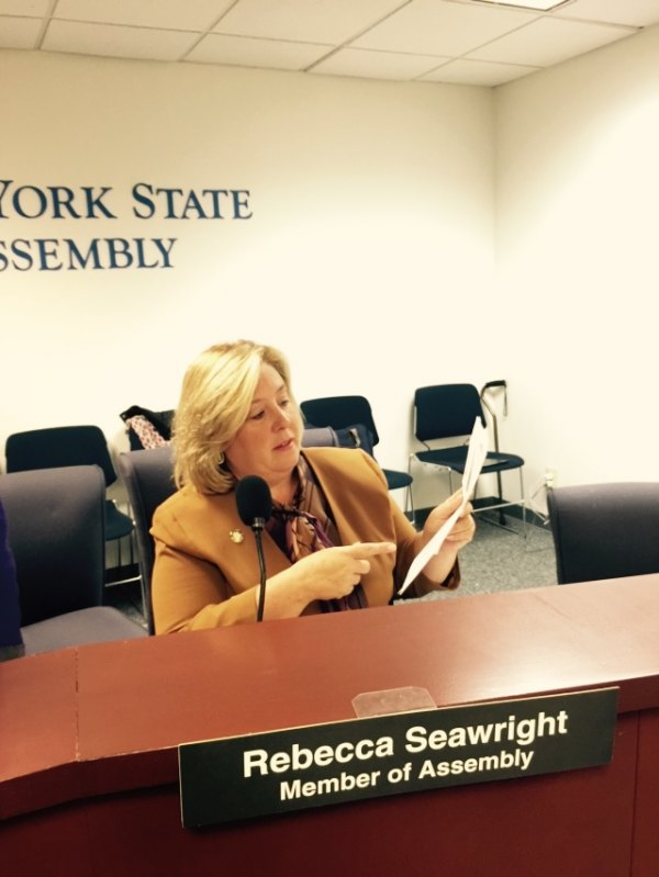 Rebecca Seawright At Work in Albany Last Year