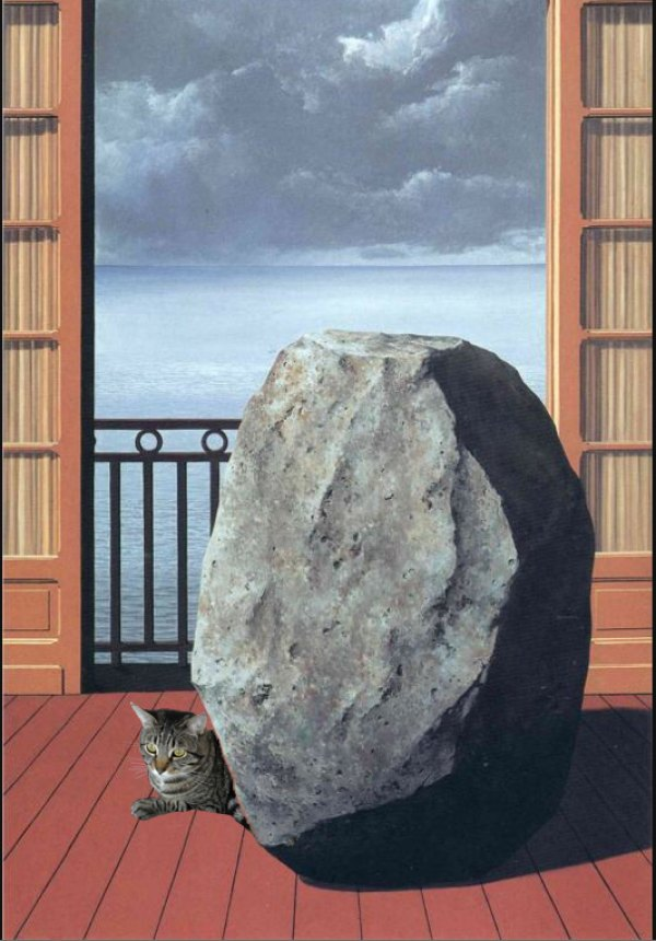 Magritte's Cat in the Invisible World