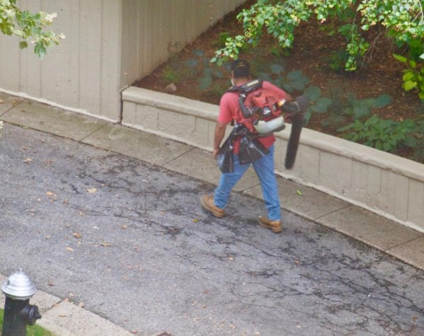 Leaf blower operator between Westview and Island House clearing up nothing but the silence we'd otherwise enjoy.